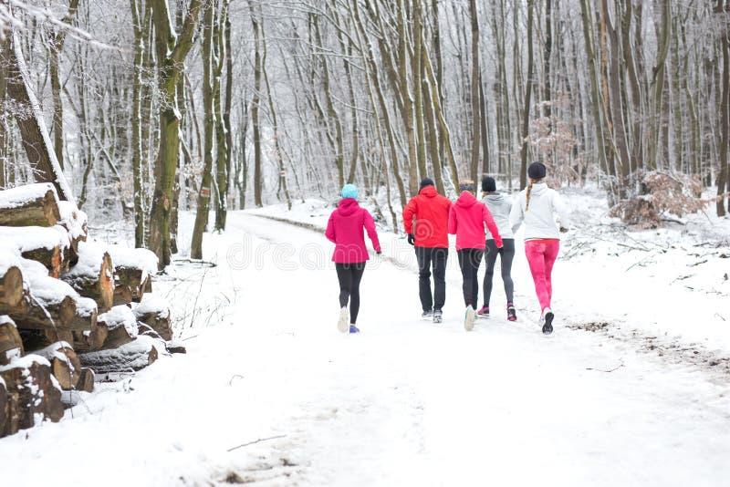 Groep vrienden die het bos in de sneeuw in winte doornemen royalty-vrije stock foto's