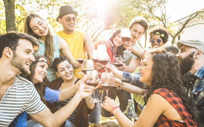Groep vrienden die wijn roosteren die pret hebben bij de partij van de barbecuetuin stock afbeelding