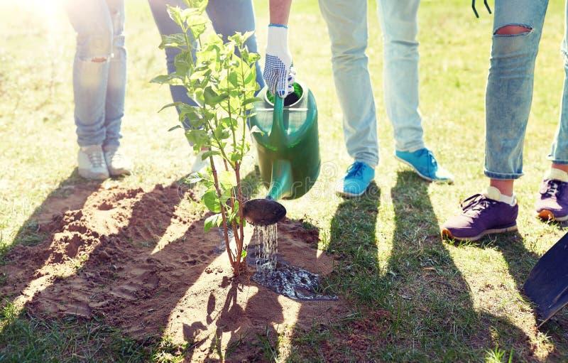 Groep vrijwilligers die en boom planten water geven royalty-vrije stock afbeeldingen