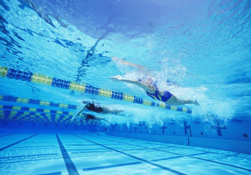 Groep vrouwelijke zwemmers die samen in zwembad rennen stock foto's