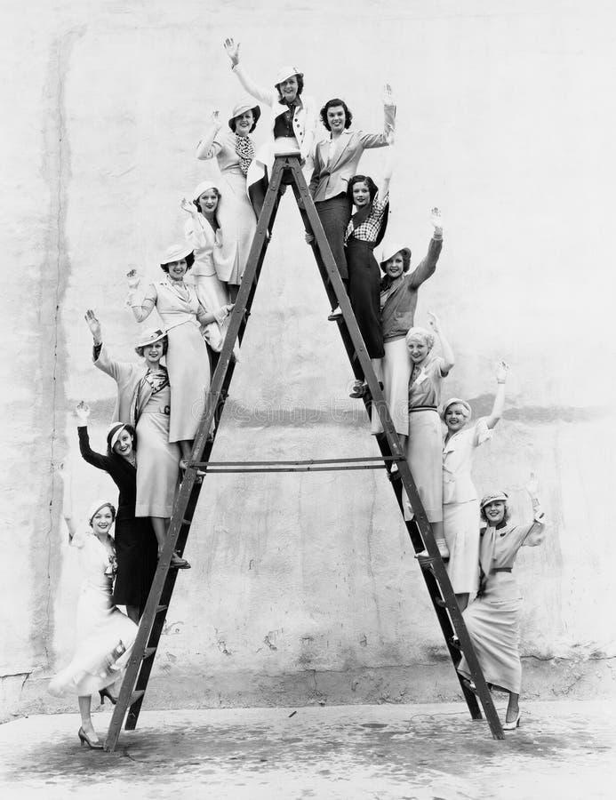 Groep vrouwen op lange ladder stock foto's