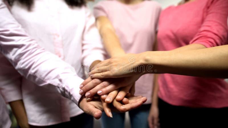 Groep vrouwen in roze overhemden die handen samenbrengen, gendergelijkheid, feminisme royalty-vrije stock foto's