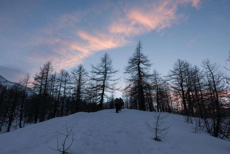 Groep wandelaarstrekking in de bergen van de Alpen Trekkers gaan door een sneeuwbos bij de zonsondergang royalty-vrije stock foto