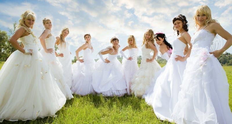 Groepen bruid op groen gras royalty-vrije stock afbeelding