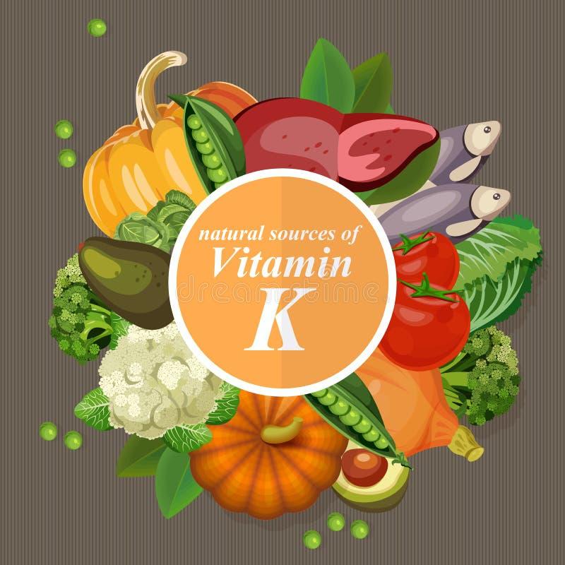 Groepen gezond fruit, groenten, vlees, vissen stock illustratie