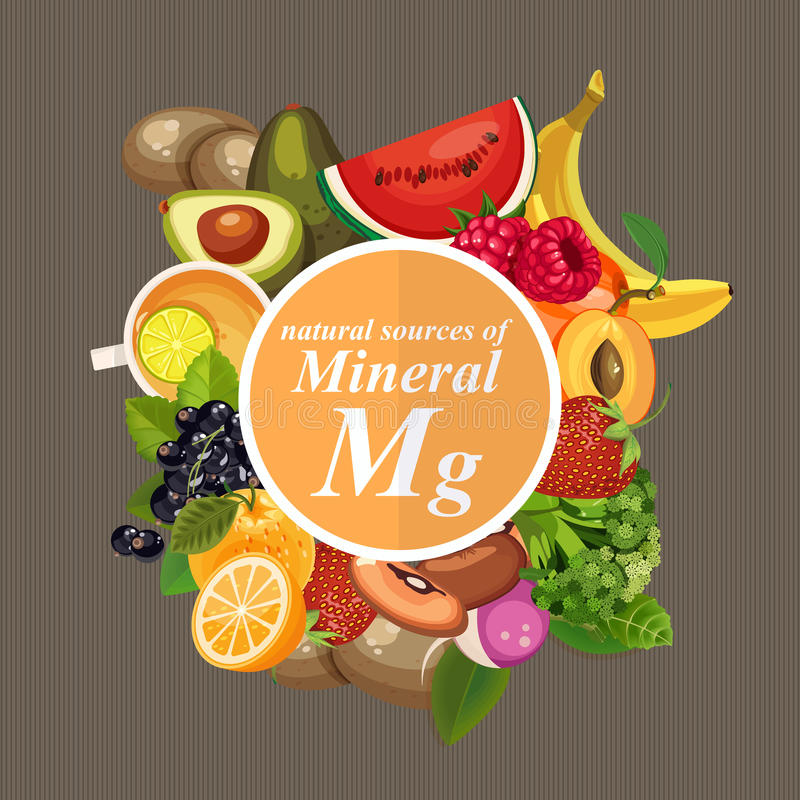 Groepen gezond fruit, groenten, vlees, vissen en zuivelproducten die specifieke vitaminen bevatten magnesium Mineralen stock illustratie