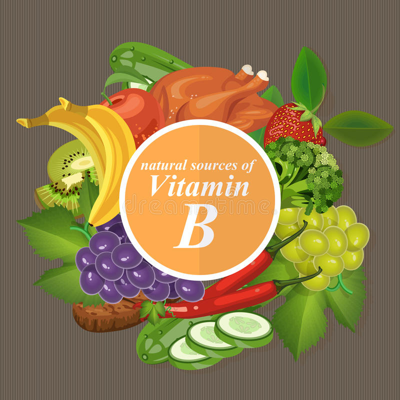 Groepen gezond fruit, groenten, vlees, vissen en zuivelproducten die specifieke vitaminen bevatten Vitamine B vector illustratie