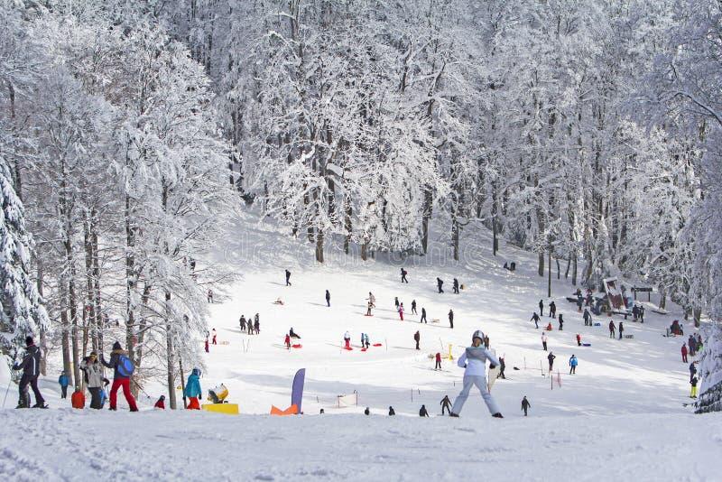 Groepsjonge geitjes en mensen die en in de sneeuw sledding ski?en royalty-vrije stock afbeeldingen