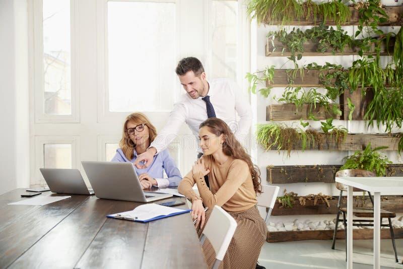 Groepswerk in het bureau Groep bedrijfsmensen die aan laptop in het bureau samenwerken royalty-vrije stock afbeeldingen