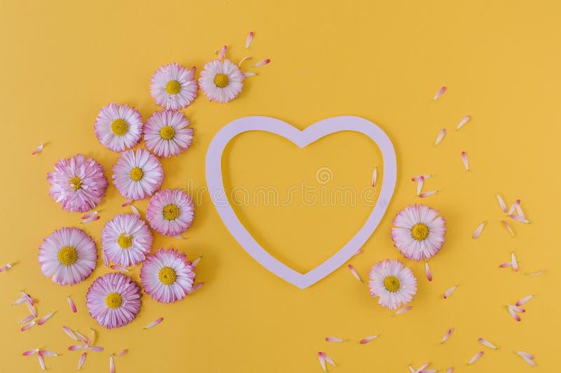 Groetkaart met hart en madeliefjes op een oranje achtergrond Hoogste mening Vlak leg stock foto