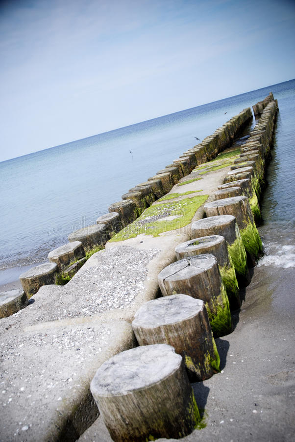 Download Groin baltic sea stock image. Image of algae, sand, wave - 21067191