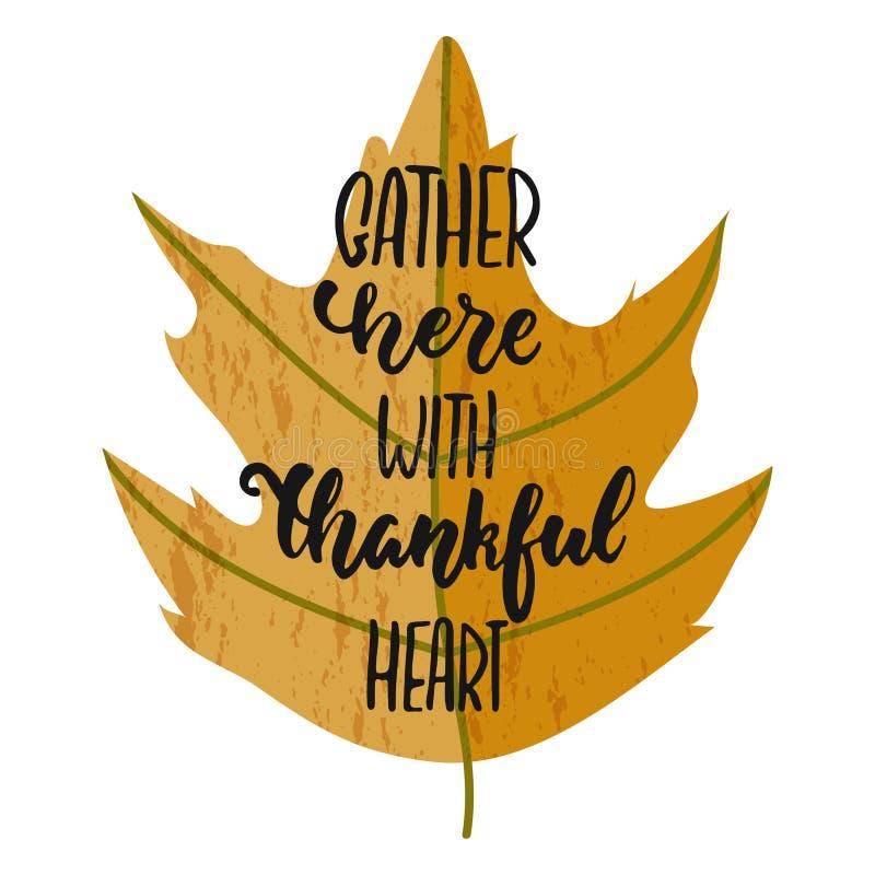 Gromadzenie się tutaj z dziękczynnym sercem - ręka rysujący jesień sezonów święta dziękczynienia literowania zwrot odizolowywając royalty ilustracja