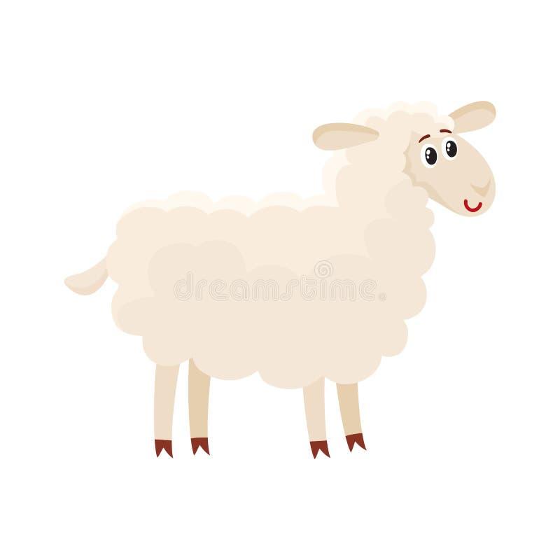 Gromed goed pluizige schapen, lam met grote ogen, vectorillustratie stock illustratie