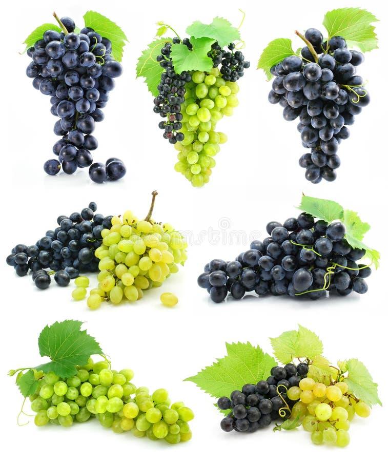 grona kolekci owoc winogrona odosobniony dojrzały zdjęcia stock