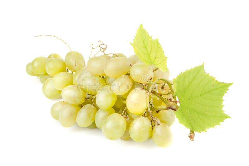 grona winogrono opuszczać biel fotografia royalty free