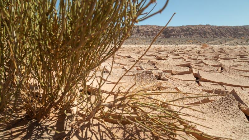 Grond met erosie in de Atacama-woestijn royalty-vrije stock foto's