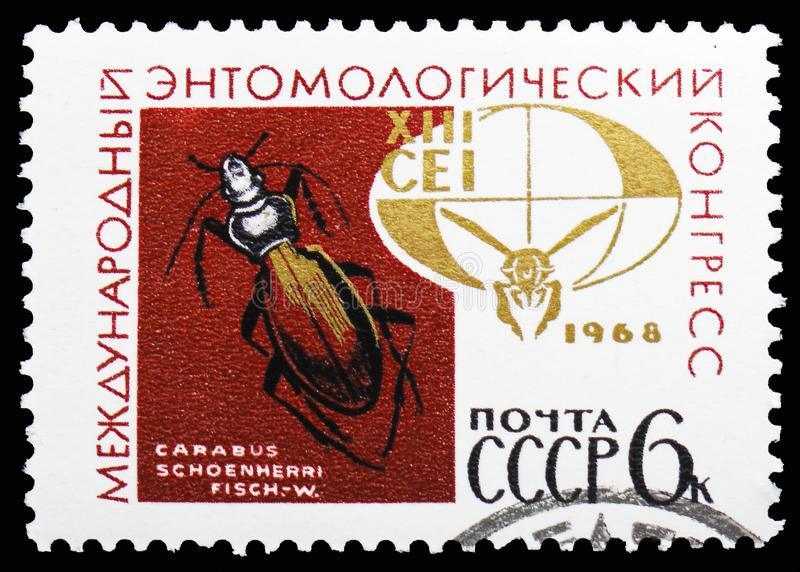 Grondkever (Carabus-schoenherri), Embleem van 13de Entomologiecongres, Internationale Congressen serie, circa 1968 royalty-vrije stock afbeeldingen