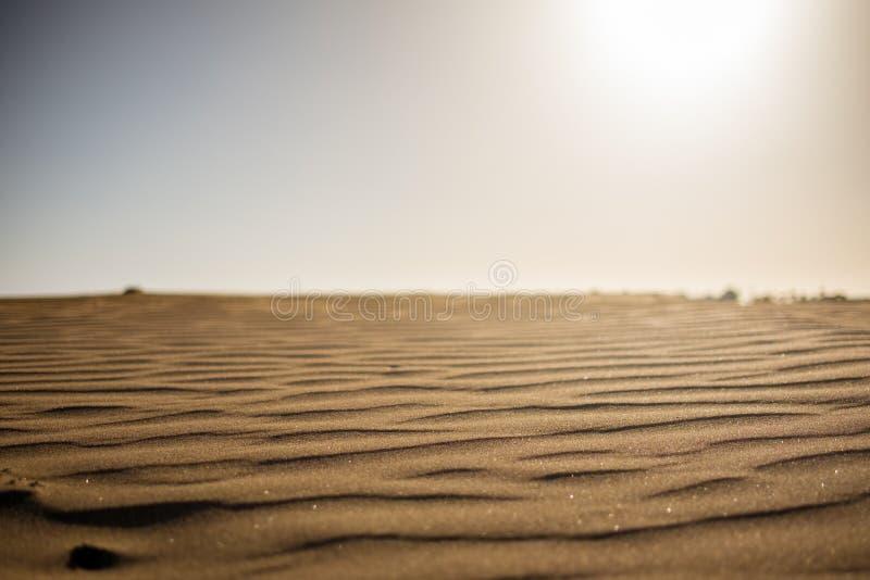Grondniveaumening van woestijnzand bij zonsondergang met zon die hard van boven het geven van een betekenis warm en heet met niem stock foto's