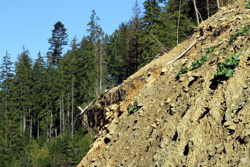 Grondverschuiving in de bergen aan Synevyrskiy-pas royalty-vrije stock foto's
