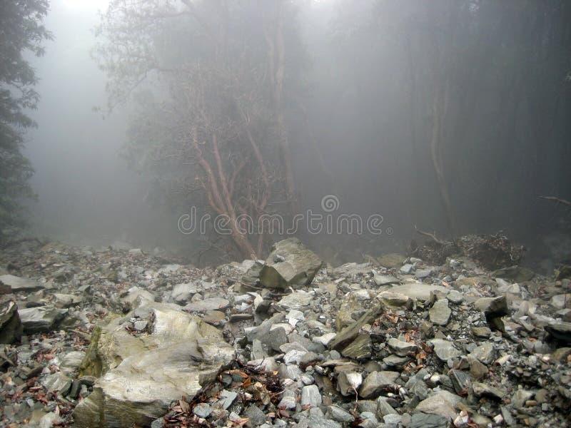 Grondverschuiving en geheimzinnige Himalayagebergte berg India royalty-vrije stock afbeelding