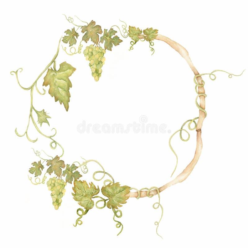 Gronowa jagodowa zdrowa jedzenie ramy ilustracja Watercolour rysunku mody aquarelle odizolowywaj?cy Ramowy rabatowy ornamentu kwa royalty ilustracja