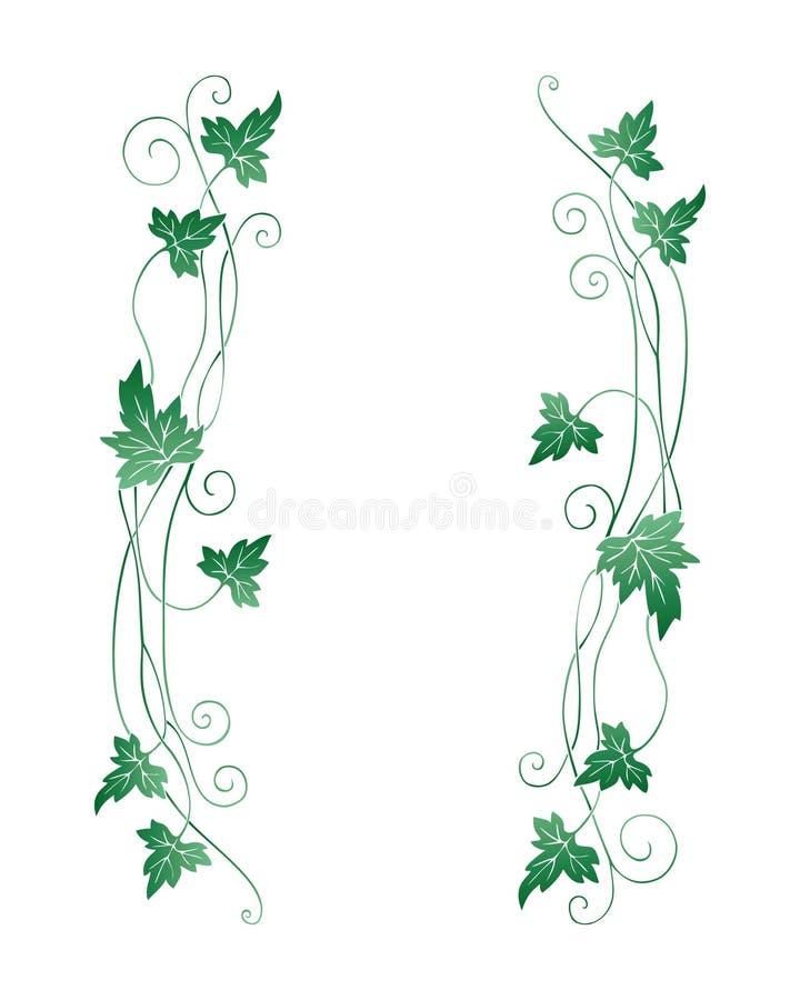 gronowi liść ilustracja wektor
