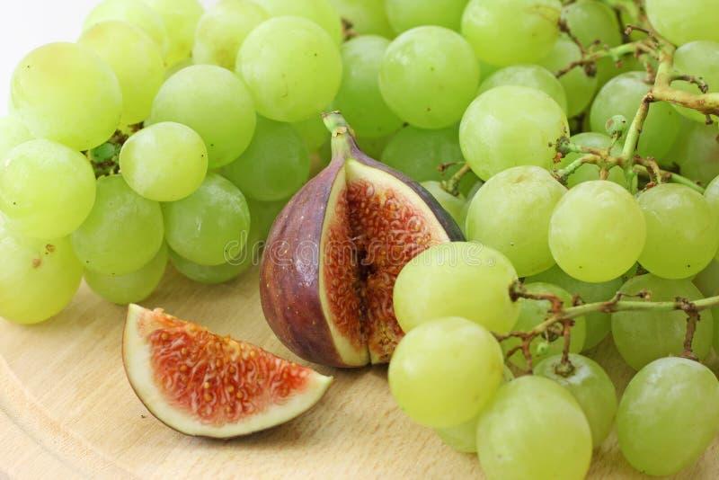 gronowy figa biel zdjęcie stock