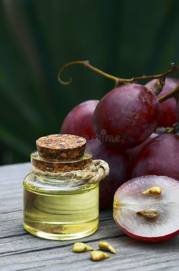 Gronowy nasieniodajny olej w szklanym słoju świeżych winogronach na starym drewnianym stole w ogródzie i Zdrój, bodycare, Życiory fotografia royalty free