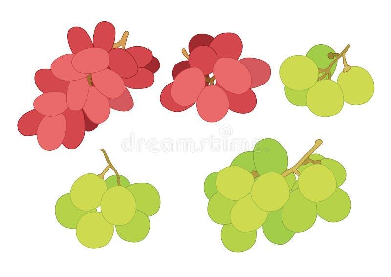 Gronowy rodzynku i rodzynki owocowy świeży na białym tle royalty ilustracja