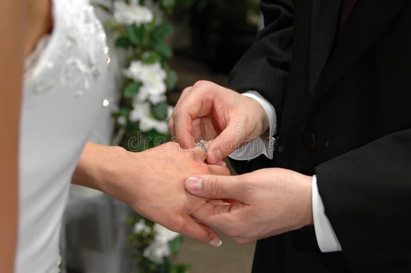 groom вводя кольцо стоковая фотография rf