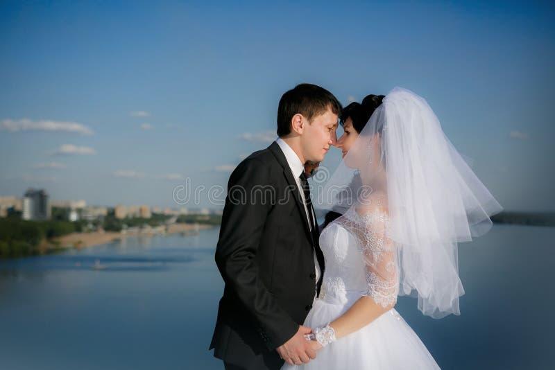 Groom и невеста во время прогулки стоковое изображение rf