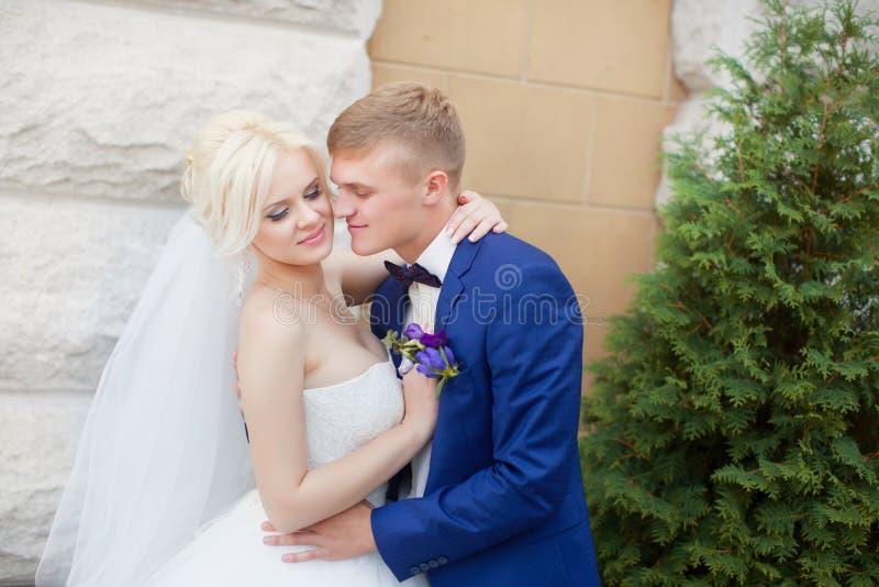 Download Groom нежно обнимает плеча ` S невесты Стоковое Фото - изображение насчитывающей сновидение, платье: 81802176