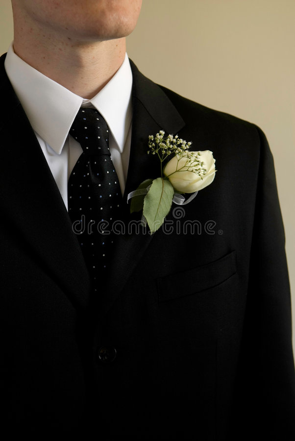 Groom Royalty Free Stock Images