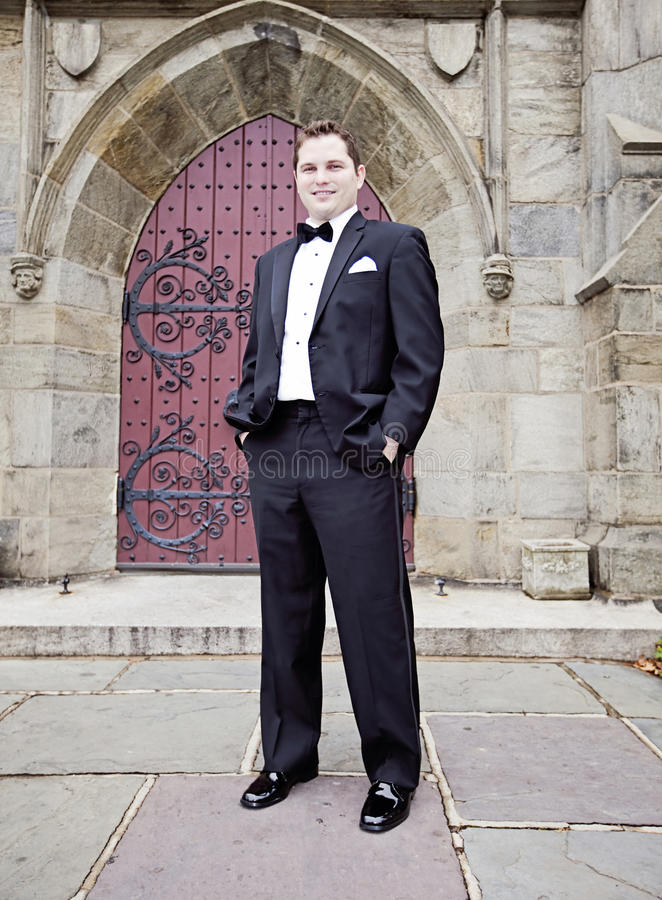 Download Groom stock photo. Image of handsome, stone, husband - 29642182