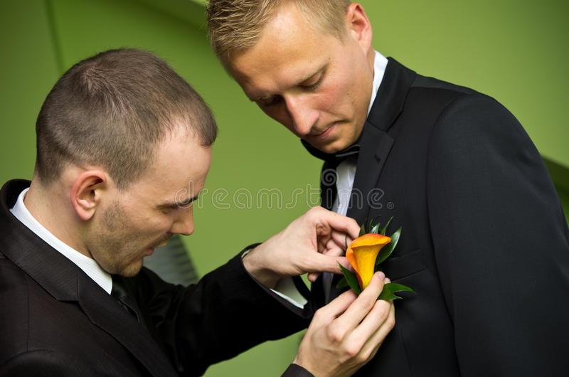 Groom and best man. Best man pining button hole flower in lapel of groom for wedding royalty free stock image