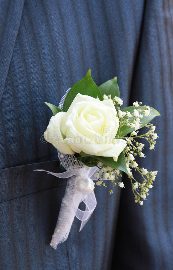 Free Groom Boutonniere Stock Images - 16261634