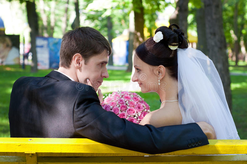 Download Groom and bride stock photo. Image of bride, beautiful - 26981674
