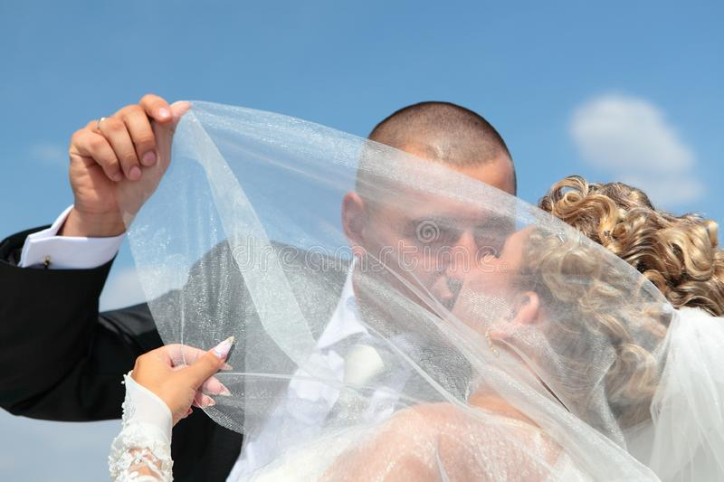 Download The Groom And The Bride Kiss Under A Veil Stock Image - Image of hair, celebration: 17162903