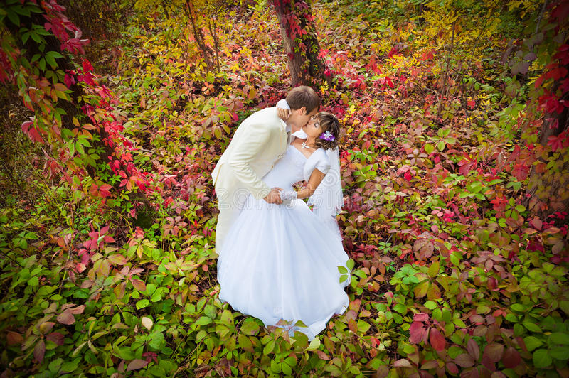 Download Groom and bride stock photo. Image of hope, meadow, message - 34925762