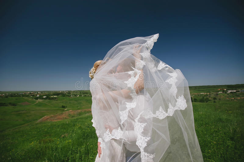 Groom and bride in a veil standing and holding hands on nature on a background of blue sky. Relationship, together, couple, wedding, lifestyle stock photography