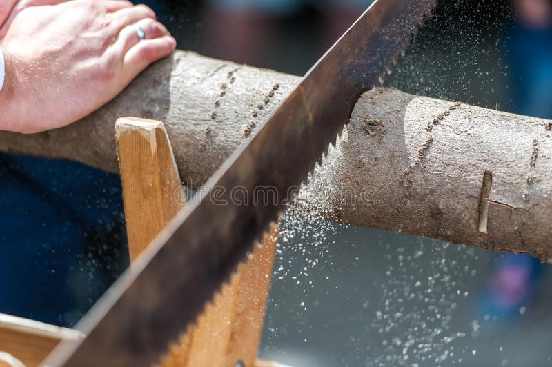 Groom cutting tree trunk with saw stock images