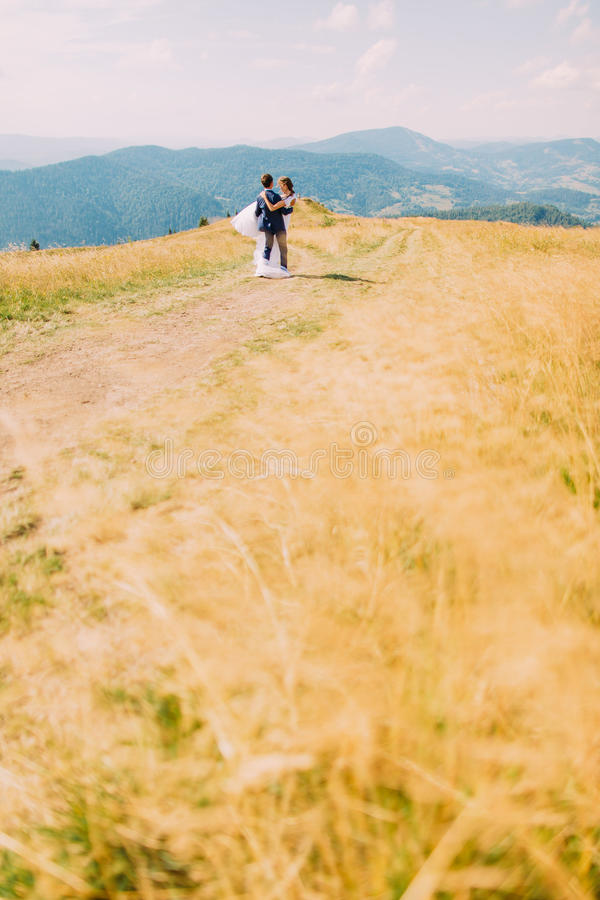 Groom holding his hew wife on hands at yellow sunny field with distant forest hills as background.  stock photo