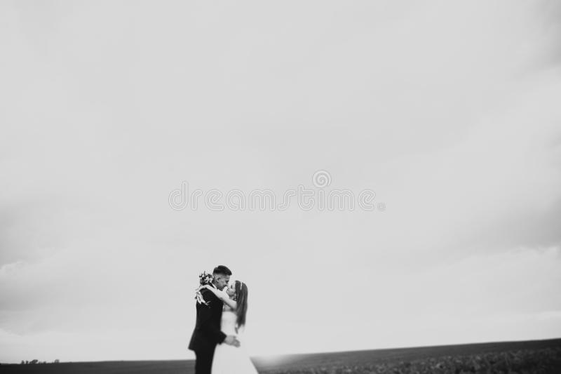 Groom is holding and kissing his bride on the background sunset royalty free stock photography