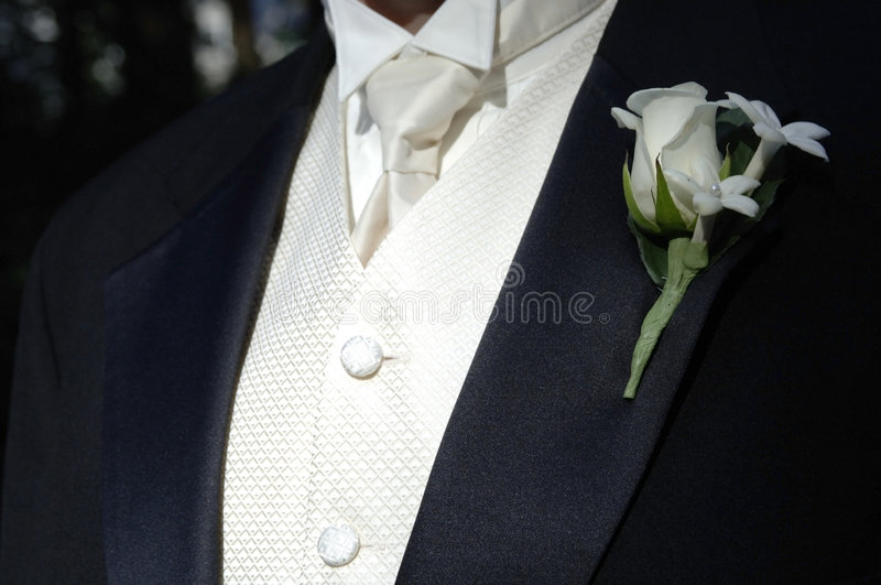 Groom's black tux and tie royalty free stock photography
