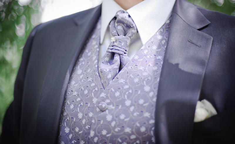 Download Grooms Suit Stock Image - Image: 21653551