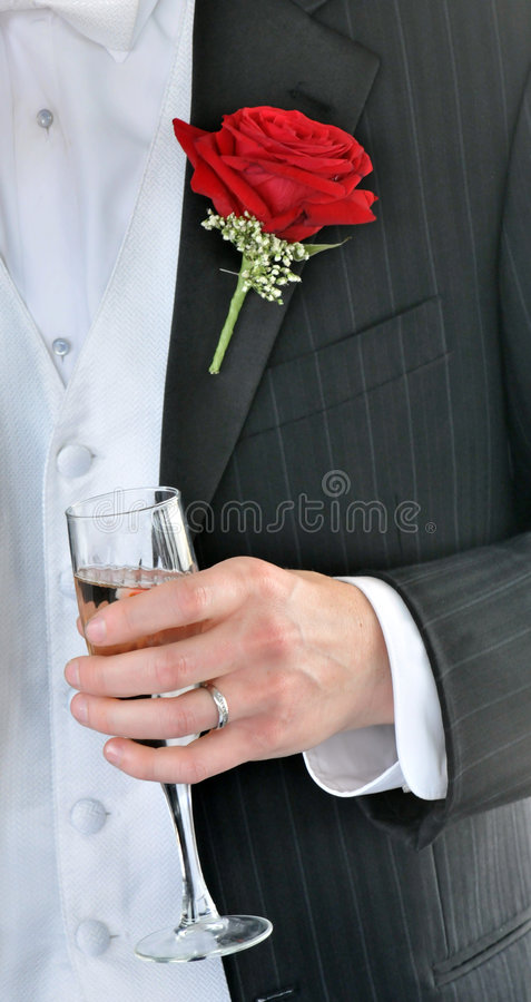 Download Groom's Toast stock photo. Image of gown, marriage, bridal - 5027008