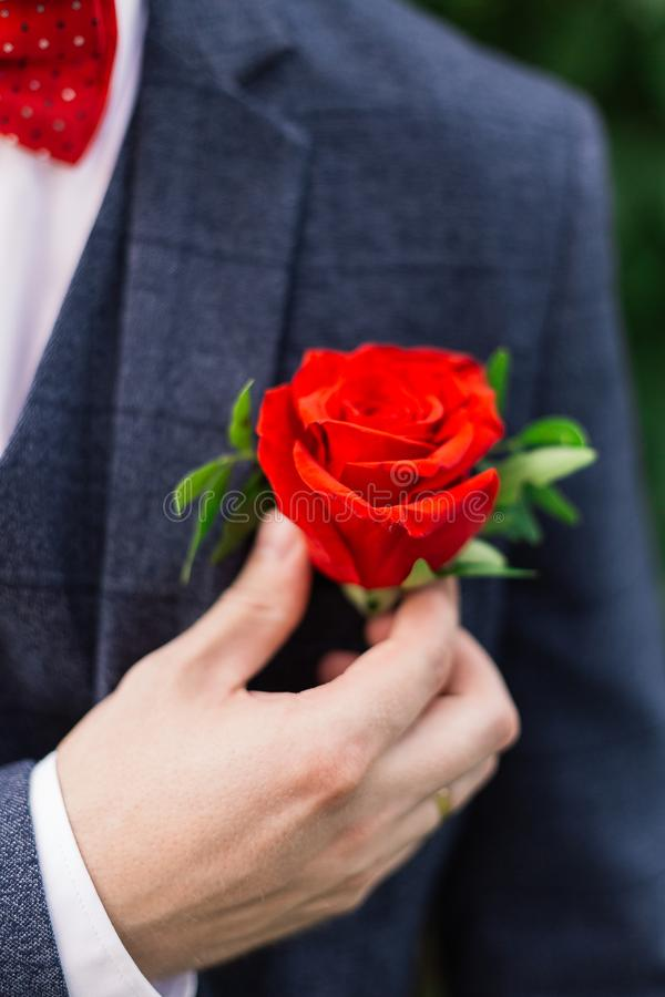 The groom straightens the boutonniere of flowers on his jacket. The groom straightens the boutonniere of flowers on his jacket royalty free stock image