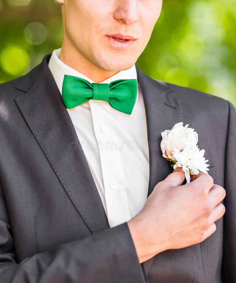 Groom in a suit holding buttonhole close-up stock image