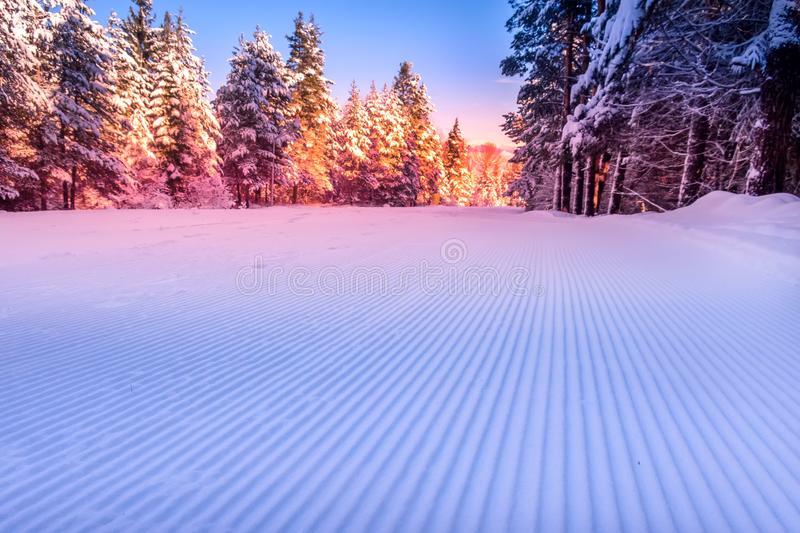 Groomed snow and forest ski slope at dawn royalty free stock photos