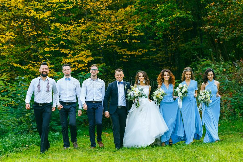 Groomsmen e damigelle d'onore immagine stock